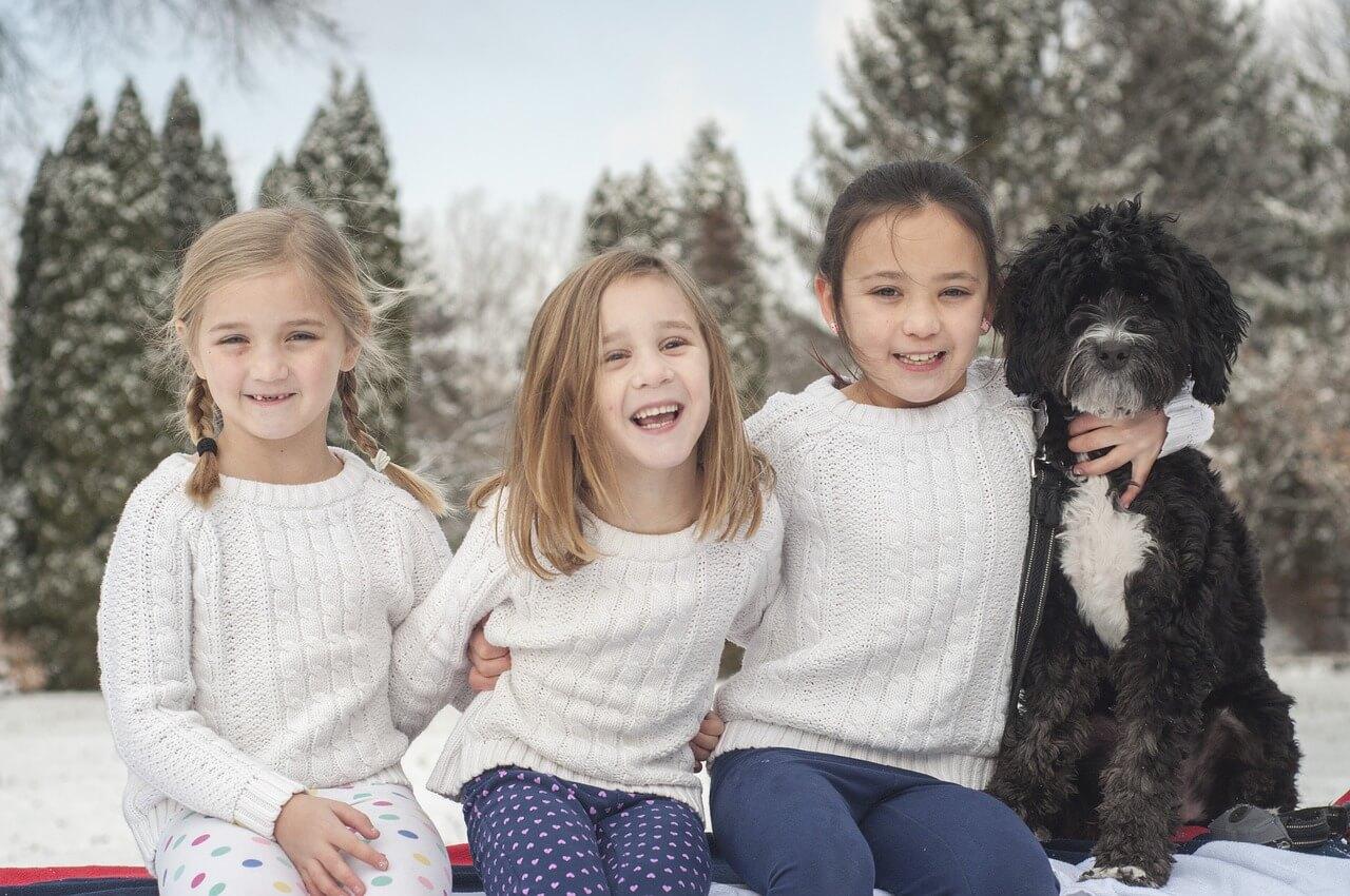 """""""Schulhund"""": Kosten als Werbungskosten absetzbar?"""