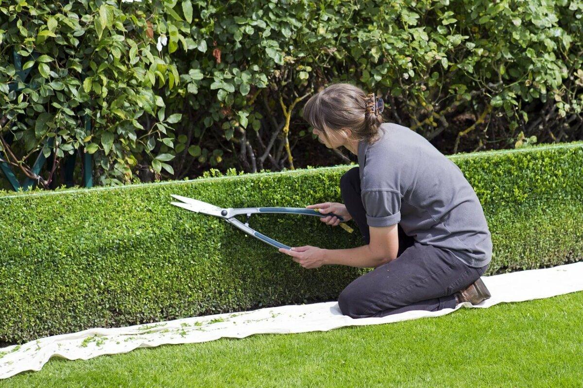 Haushaltsnahe Dienstleistung: Wann sind Gartenarbeiten begünstigt?